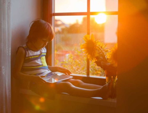 What to Expect From your Home Window Film Installation